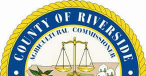 riverside_expungement_lawyer